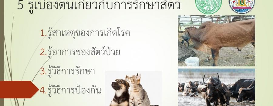 5 รู้เบื้องต้นเกี่ยวกับการรักษาสัตว์